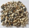 Gravel pebbles stones