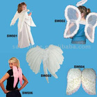 Feather Angel Wings and Halo