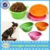 rabbit feeder pet feeder