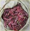 2012 new crop of sweet paprika