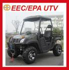 ECC 300CC UTV JEEP(MC-152)