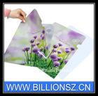 PP plastic Document A4 file folder