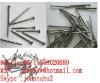 naill polish machine 0086 15238020689