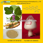 Kudzu Extract with Isoflavone/Puerarin from GMP Manufacturer