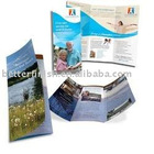 High quality Custom Printing Brochure