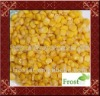 Top sale canned sweet corn