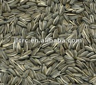 Sunflower Seeds-6009