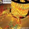 2012 HOT Flexible Christmas led strip multicolour rope light