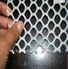 HDPE Diamond Shape Plastic Mesh(factory)