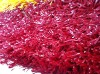 MIE Colourful Artificial Turf