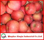 JQ Fresh Fruit Market Price Red Fuji Apple 20KG/Carton