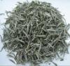 """""""organic silver needle"""" White Tea"""