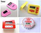 AWP198/220/317/274 Electronic Countdown Timer