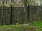 picket weld fence(factory&exporter)