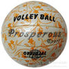 Size5 Machine sewn volleyball, professional volleyball, orange