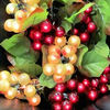 Red And Green Color Grape lights