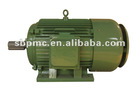 Y Series AC Motor
