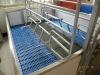 Pig Farm equipment for farrowing