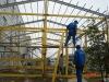 composite building structures