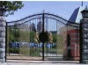Modern wrought iron gate design