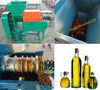 High efficiency palm oil press machine/palm fruit oil press machine/008613676951397