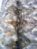 Jacquard Long-pile fur fabric