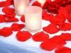 confetti paper(rose petal)