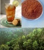Instant Black Tea, Chinese instant black tea. high quality instant tea with fine traditional culture