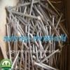 Anping Manufacture Polishing Iron Nail