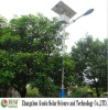 10w Reliable Quality Solar street light