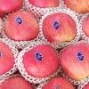 2012 New A grade Fuji Apple
