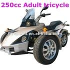 New 250cc Trike
