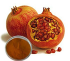 Factory supply! Pomegranate extract/Punicalagin10-90% HPLC