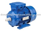 MS Series Three-Phase Induction Motor