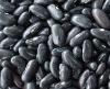 Long Black Kidney Beans