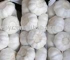 Top garlic