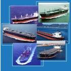 shenzhen warehouse shipping service to Houston,USA---Lucy