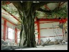 artificial tree 5