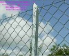 galvanized chain link fence(manufacture or export)