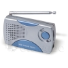 Mini AM/FM Radio