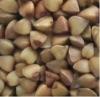 Bulk roasted buckwheat kernels