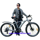 "250W/36V/26"" Electric Bike with CE"