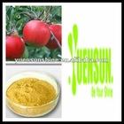 freeze dried apple powder