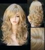 Top quality 100% virgin indian human hair full ace wig