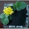 Sodium humate(HA Na)