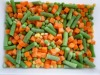 supply new crop top quality Chinese frozen mixed vegetable