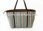 Fashion Canvas handbag for Ladies