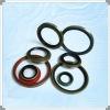 bearing oil seal