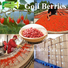 Natural Goji Berry