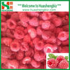 IQF Frozen organic Raspberry Price